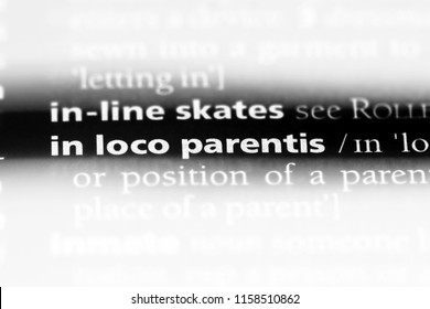 in loco parentis word in a dictionary. in loco parentis concept.