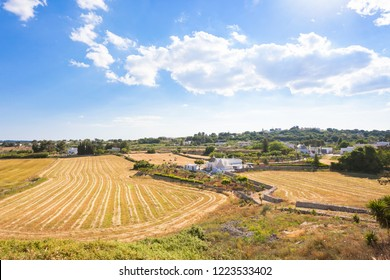 Locorotondo, Apulia, Italy - Agriculture in the italian region of trulli buildings