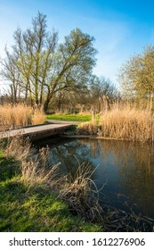 Lode waterway on Wicken Fen nature reserve, Cambridgeshire; England; UK - Shutterstock ID 1612276906