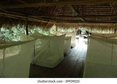 Lodge house in Amazon.