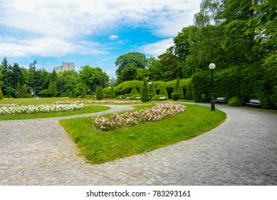 Lodz park in summer
