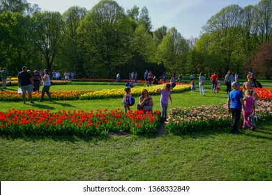 LODZ, POLAND, BOTANICAL GARDEN, APRIL 21 2018; Sunday walk in the Botanical Garden in Lodz. Family walks. Sunday rest. Beautiful tulips in the Lodz, botanical garden