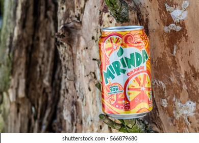 Lodz, Poland, January 28, 2017: Can of Mirinda soft drink. Created in Spain. Mirinda has been owned by PepsiCo since 1970, trunk, tree bark