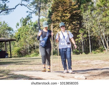 LOEI, THAILAND - JANUARY 20: The tourist are walking up to Phu Kradueng National Park with difficulty and be tired on January 20, 2018 in Phu Kradueng, Loei, Thailand.