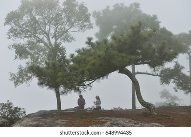 LOEI, THAILAND - NOVEMBER 25, 2016. The couple are eating and seeing the view under the big tree with fog at Phu Kra Dueng National Park. Located on North-East in Thailand.