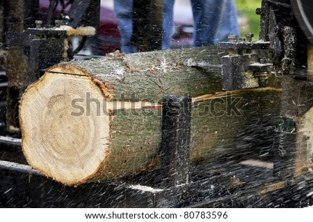 log being cut into lumber by a band saw mill