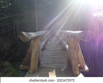 Log Bridge at Sunrise