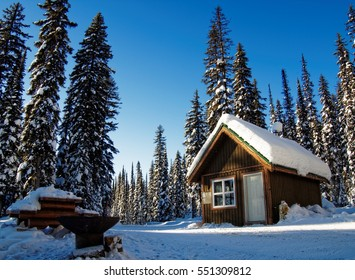 Log Cabin Hidden in Snow Covered Forest