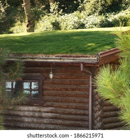 Log Cabin Wooden House On A Hillside At Forest Or Park With Green Eco Friendly Roof Covered Lawn From Fresh Grass. Secluded Wooden Lodge Or Hunting House With Sod Roof In Norwegian Style.