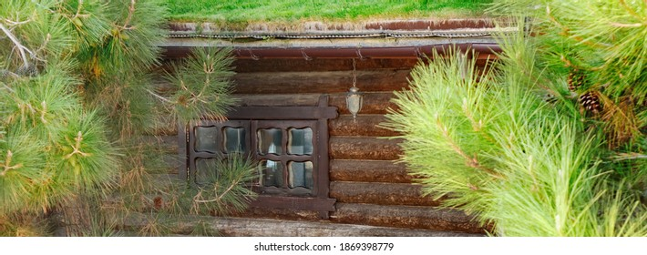 Log Cabin Wooden House With Windows On A Hillside At Forest Or Park With Green Eco Friendly Roof Covered Lawn From Fresh Grass. Wooden Abstract Construction or Architecture Wide  Background.