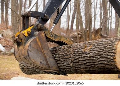 Log loader grabs a log to move it