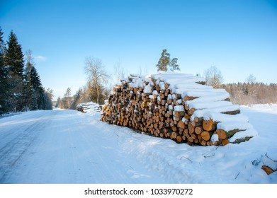 Log stacks along the forest road in winter.