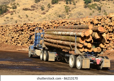 A log truck delivers its load to a sawmill in Oregon