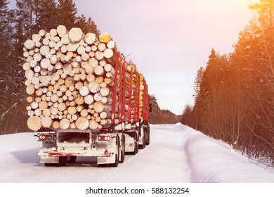 Log truck loaded with wood. Timber truck just finished loading on small scandinavian dirt road.