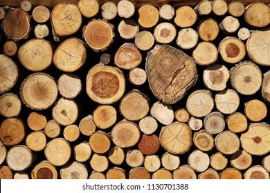 Log Wood Pile