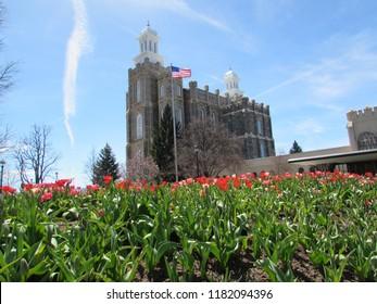 Logan Utah Temple on a beautiful spring day