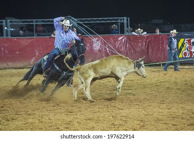 LOGANDALE , NEVADA - APRIL 10 : Cowboy Participating in a Calf roping Competition at the Clark County Fair and Rodeo a Professional Rodeo held in Logandale Nevada , USA on April 10 2014