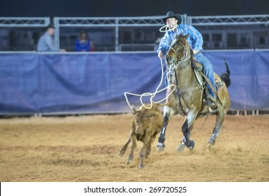 LOGANDALE , NEVADA - APRIL 10 : Cowboy Participating in a Calf roping Competition at the Clark County Fair and Rodeo a Professional Rodeo held in Logandale Nevada , USA on April 10 2015