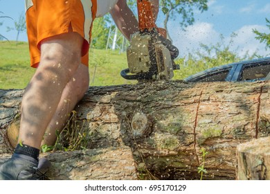 Logger cutting a tree trunk with a chainsaw.