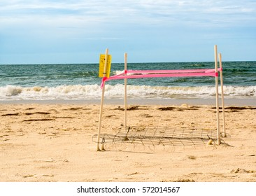 Loggerhead sea turtle nest eggs and hatchlings are protected on St George Island beach Florida with covers and ropes