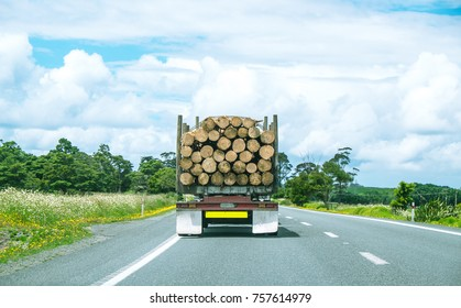 Logging industry truck driving on State Highway One road in Northland, North Island, New Zealand, NZ