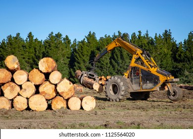 Logging machinery shift and stack logs ready to transport