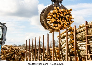 Logging, sawmill. Bunching grapples of log loader lifting pile of logs