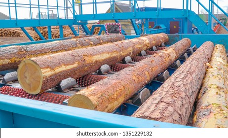 Logs being transferred on a log machine inside the sawmill industry