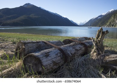 Logs left by logging operations in Taiyasanka harbor near the Lynn Canal in Southeast Alaska with a sailboat in the background.