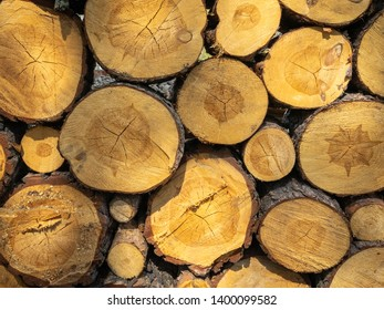 Logs. Log cuts Close Up. Stack of logs. Stack of firewood close up. Logs cuts prepared for fireplace. Woodpile. Wood for fireplace. Wood for winter. Firewood background.