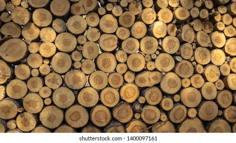 Logs. Log cuts. Stack of logs. Stack of firewood. Logs cuts prepared for fireplace. Woodpile. Wood for fireplace. Wood for winter. Firewood background.