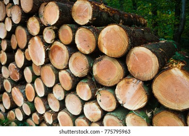 logs logging wood