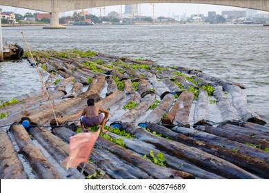 logs send raft down the Chowpraya river, increse deforestation for cultivate, Thailand