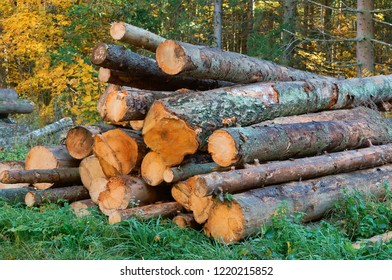 logs stacked on top of each other, deforestation, deforestation, felled tree trunks