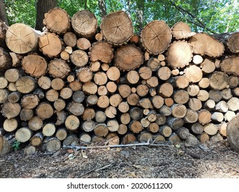 Logs stacked in a woodpile. Firewood for the bath. Green trees in summer. Brown wood. Tree cuts.