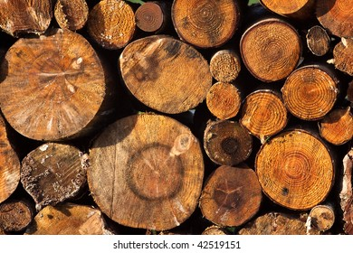 Logs of various sizes stacked in a pile