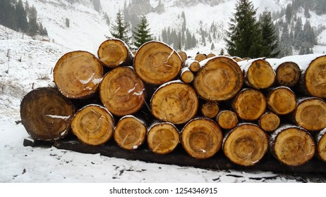 logs of wood stacked on pile nearby of hut in mountains, preparation for winter in Swiss Alps, close to Fluhli town, Switzerland, Europe