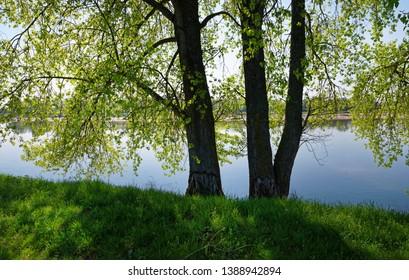 Loire river bank in Centre val de Loire region