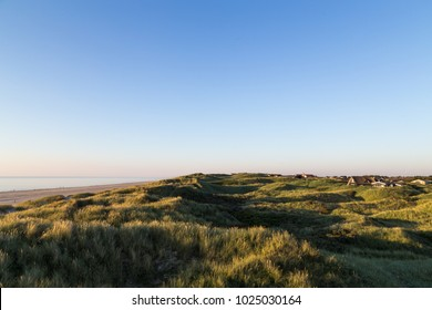 Lokken, Denmark - August 22, 2015: Grass on sand dunes at Lokken Beach in Jutland