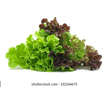 lollo rosso and batavia lettuce on white background