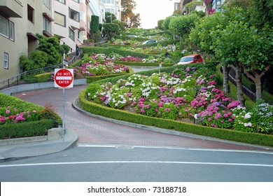 Lombard street in San Francisco, the crookedest street in the world.