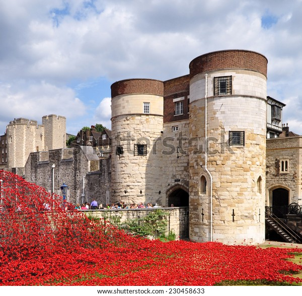 LONDON - AUGUST 7.  888,246 ceramic poppies commemorate the British and colonial military who died in the 1914-18 First World War, installed on August 7, 2014 at the Tower of London, UK.
