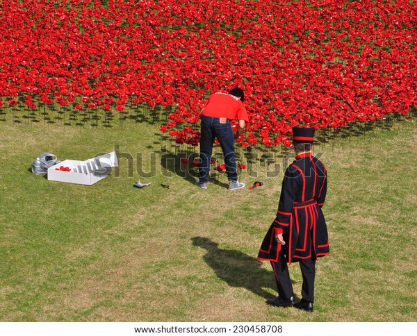 LONDON - AUGUST 7. Yeoman and a volunteer installing ceramic poppies on August 7, 2014 commemorating the 888,246 First World War British and colonial military deaths, located at the Tower of London.