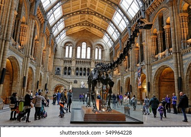 London, England - 21.November.2016 - Natural History Museum interior