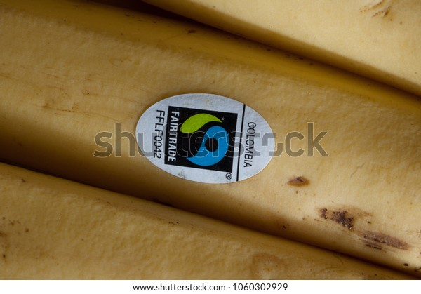 London, England - January 1 2008: Some Fair Trade bananas in a British supermarket.