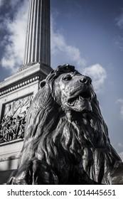 London, England - January 2017: The lion monument at Trafalgar Square.