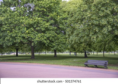 LONDON, ENGLAND -MAY 03, 2014: Bank and trees, in the Kensington gardens