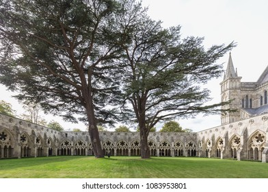 London, England - Oct 6,2017 : Cloister of Salisbury Cathedral (known as the Cathedral Church of the Blessed Virgin Mary), an Anglican cathedral in Salisbury, England.