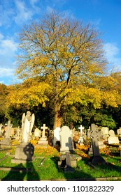 LONDON, ENGLAND-21 NOVEMBER 2013: Putney Vale Cemetery and Crematorium in southwest London