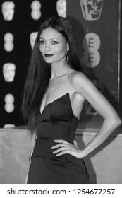 LONDON - FEB 12, 2017: Thandie Newton attends The EE British Academy Film Awards (BAFTA) at the Royal Albert Hall